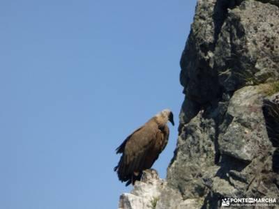 Monfrague-Trujillo;lagunas ruidera gr 10 la panera el espinar findes montes de leon